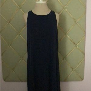 Alice and Olivia Blue Maxi